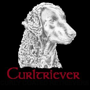 Curltriever